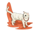 White Cat Walking Animal Vector Clipart