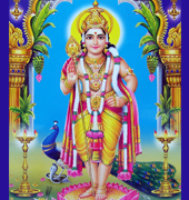 Indian Hindu God Lord Bala Murugan Subramanya Image High Resolution Desktop Wallpaper Download